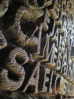 Typography, Sagrada, Familia, Cathedral