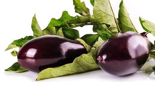 Eggplant, Leaves, Vegetables, Vegetarian, Natural