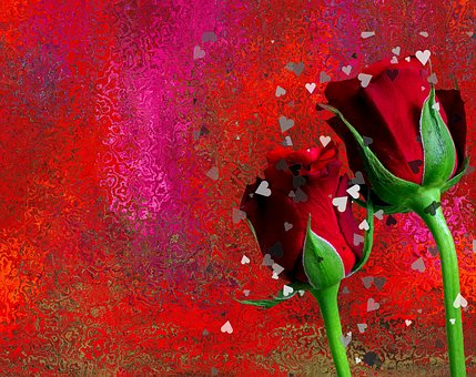Roses, Love, Romantic, Red Rose, Red, Flowers, Blossom