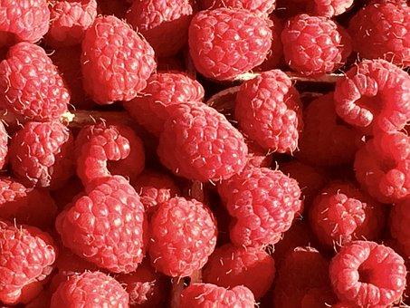 Raspberry, Fruit, Berries, Red, Sweet, Close, Nature