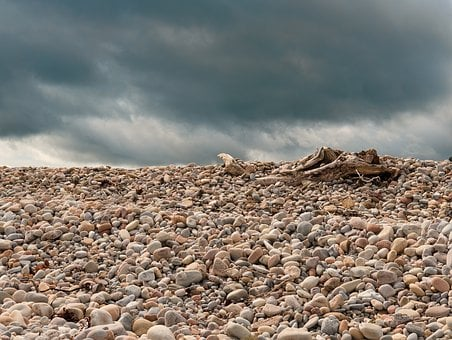 Hot Weather, Pebbles, Beach, Driftwood, Summer, Stormy