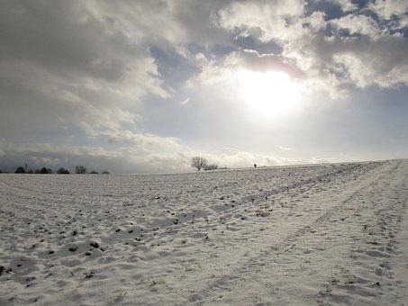Winter's Day, Snow, Snow Cover, Sky, Winter Sun, Wintry