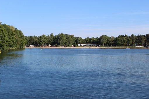 Lake, Trees, Beach, Nature, Bank, Landscape, Water