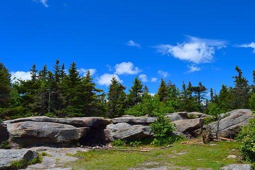 Mountainside, Clouds, Trees, Rocks, Pine, Landscape