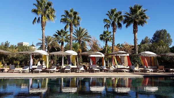 Pool, Palm Trees, Marrakech, Swimming Pool, Resort