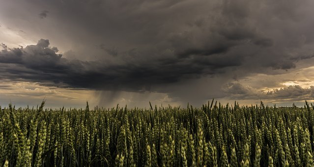 Thunderstorm, Cloud, Weather, Cloud Formation, Sky