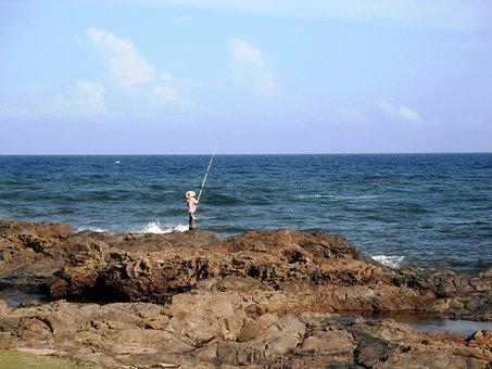 Sun, Sea, Fish, Sunday