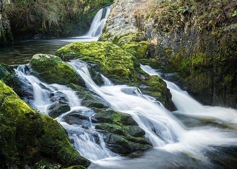 Ingleton, Waterfall, Trail, Yorkshire, Water, Nature