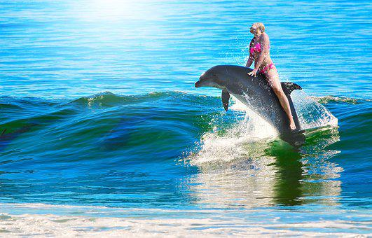 Woman, Dolphin, Ride, Swim, Woman Riding Dolphin, Wave
