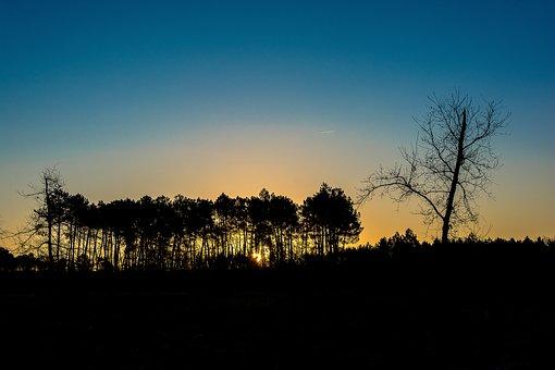 Arcachon Basin, Sunset, Lanton