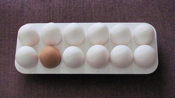 Eggs, Food, Breakfast, White, Protein, Chicken