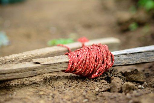 Gardening, Garden Soil, Rope, Cord, Staking, Job, Grow