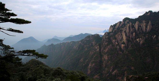 The Scenery, Mountain, Pine Mist