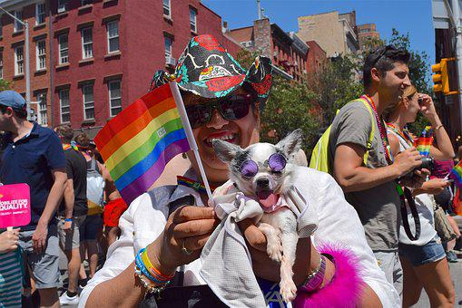 Gay Pride, Pride Fest, Dog, Nyc, New York City, Pride