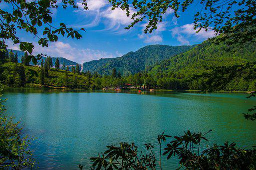 Lake, Forest, Green, Blue, Clouds, White, Pine