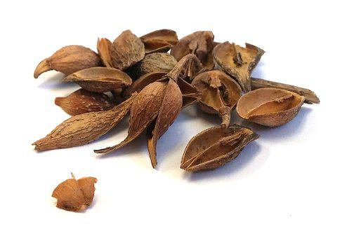 Traditional Chinese Medicine, Herb, Chinese Medicine