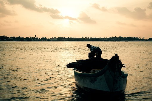 Sunset, Fishing, Hard-working