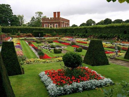 Garden, British, Flower, Summer, Plant, Gardening