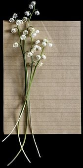 Lilies Of The Valley, Vintage, Letter, Paper, Flower
