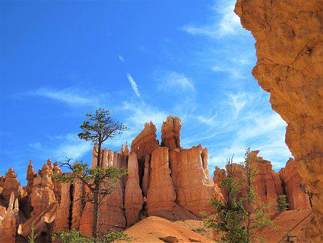 Bryce Canyon, Utah, Red Sandstone, Blue Sky, Trees