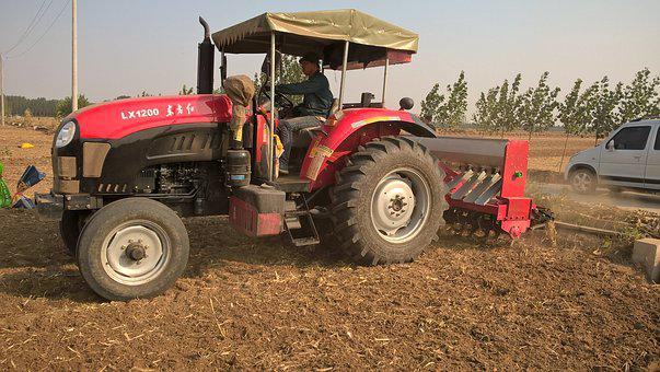 Turn To, Farmland, Corn, Country, Machinery, Labor