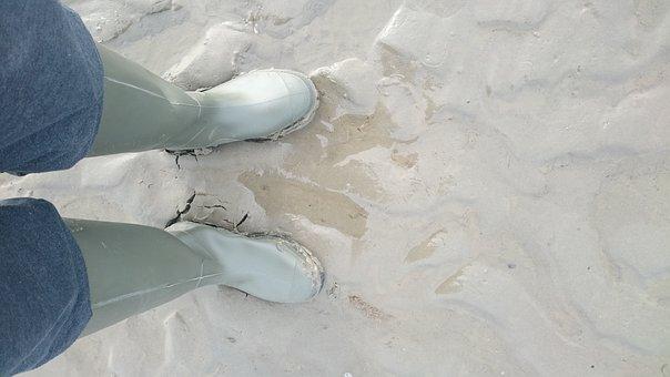 Feet, Sea, Watts, Ebb, Rubber Boots, Hike, Camera