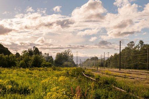 Landscape, Sky, Beauty, Stroll, Gatchina, Russia