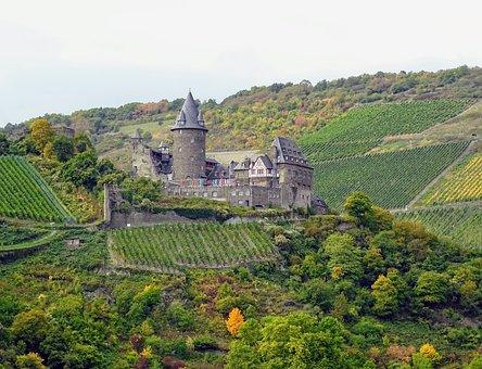 Mosel, Castle, Vineyards, Nature, Autumn