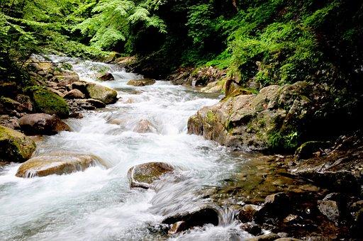 Water, River, Valley, Green, Natural, Natural Water