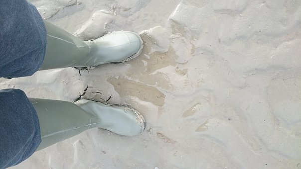Feet, Sea, Watts, Ebb, Rubber Boots, Hike, Camera