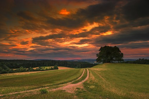 Nature, Landscape, Of Course, Summer, Sky, Sunset, Tree