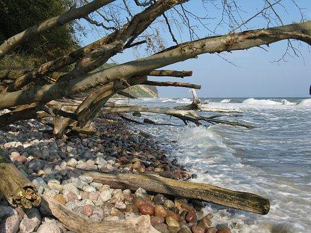 Coast, Island, Rügen, Baltic Sea, Sea, Cliff, Water