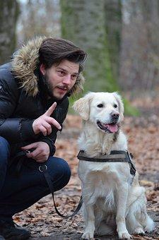 Leisure, Wildlife Photography, Pet Photography, Dog