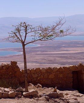 Dead Sea, Israel, Landscape, Salt, Travel, East