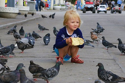 Kids, Baby, Happiness, Beauty, Girl, Daughter, Pigeons