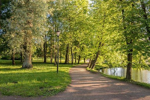 Park, Gatchina, Stroll, Handsomely, Evening, Heat