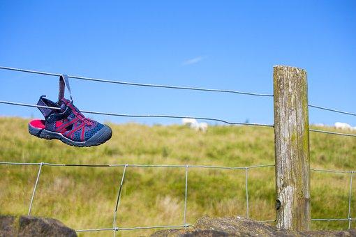 Shoe, Lost, Footwear, Field, Summer, Nature, Walking