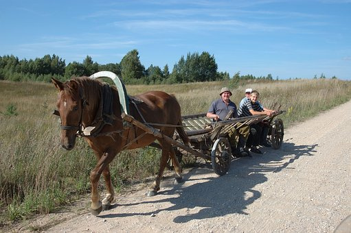 Wagon, Coach, Horse