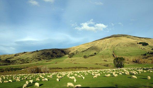 Nature, Landscape, Sky, Mountain, New Zealand, Travel