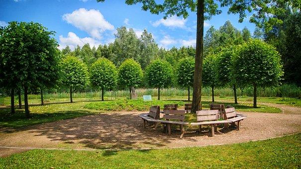 Wilhelminabos, Kwf, Bench, Trees, Memorial Site, Green