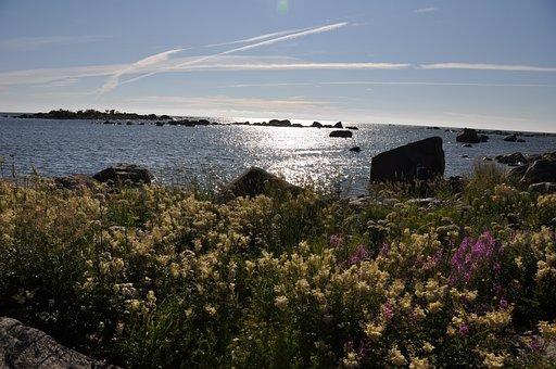 Sea, Finland, Nature, Sky, Landscape, Scandinavia