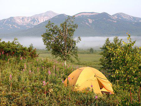 Summer, Forest, Lake, Tent, Vacation, Nature, Grass