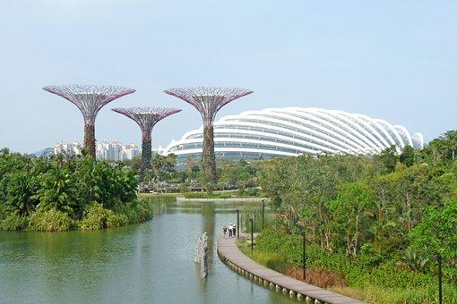 Singapore, Marina, Bay, Gardens, Trees, Centre