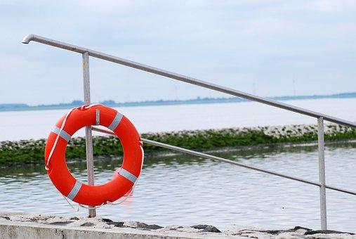 Swim, Sea, Jade, North Sea, Holiday, Water