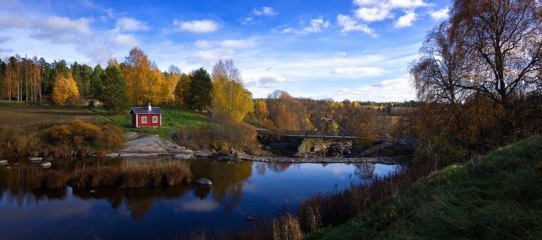 Autumn, Forest, Nature, Landscape, Fall, Foliage, Tree