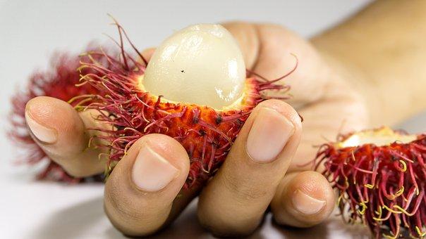 Rambutan, Fruit, Background, Hand, Fresh, White, Red
