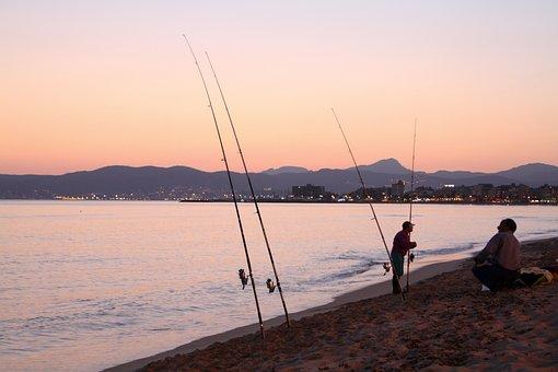 Fish, Sea, Beach, Evening, Abendstimmung, Fischer