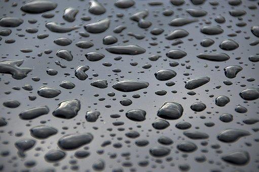 Water, Just Add Water, Water Droplets, Drop, Dew