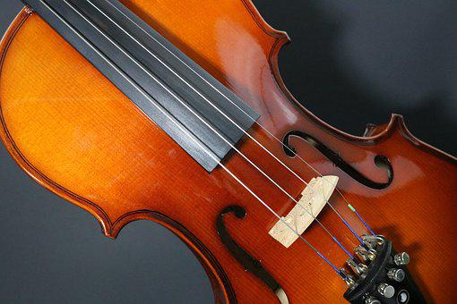 Violin, Stringed, Musician, Play, Classical, Orchestra