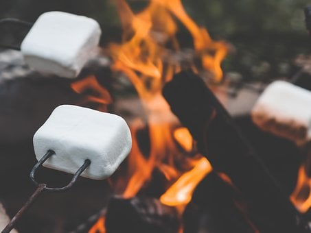 Marshmallow, Marshmallows, Campfire, Roasting, Summer
